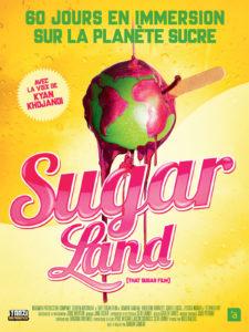 "Affiche du film ""Sugarland"""