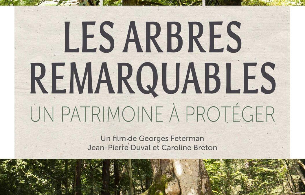 Les arbres remarquables, un patrimoine à protéger